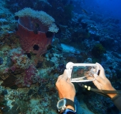 buy box for underwater photography